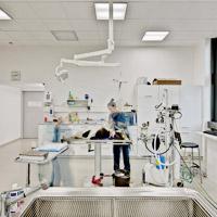 veterinární klinika Bessy´s
